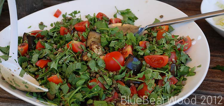 Aubergine And Puy Lentil Salad