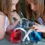 Home science: Water creep via capillary action