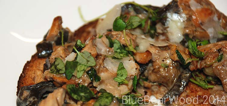 Wild Mushrooms on Toast