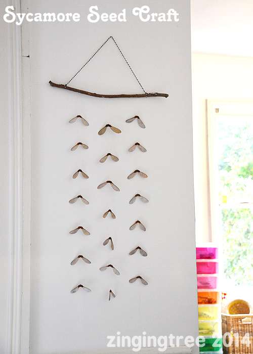 Helicopter Seed Wall Decor