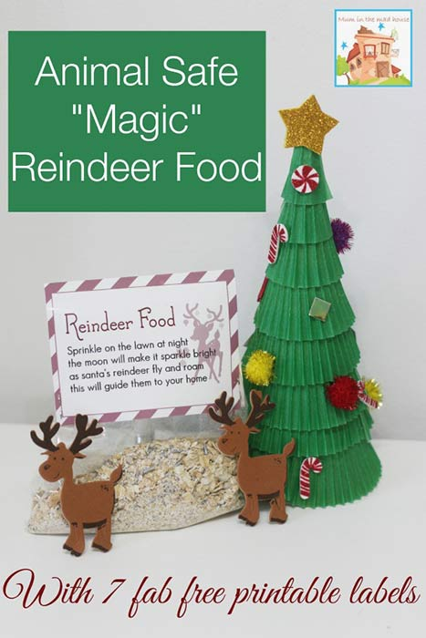 Animal Safe Magic Reindeer Food