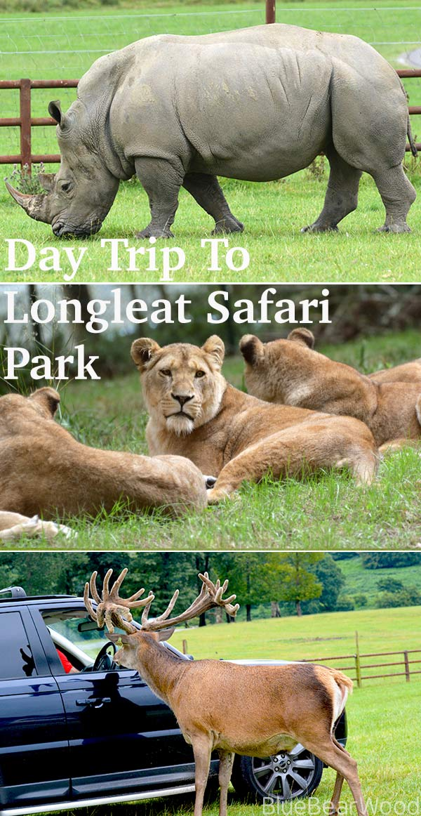 Day Trip To Longleat Safari Park