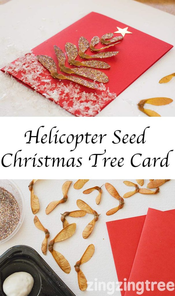 A gorgeous nature craft for Christmas. Use Helicopter Seeds to make a Christmas Tree Card