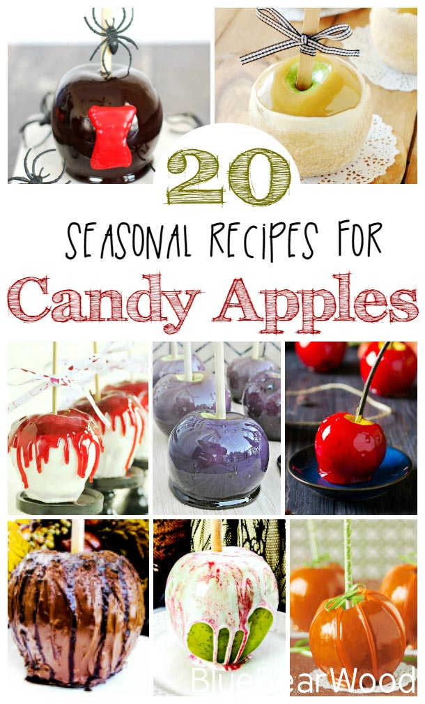 20 Seasonal Autumn Candy Apples