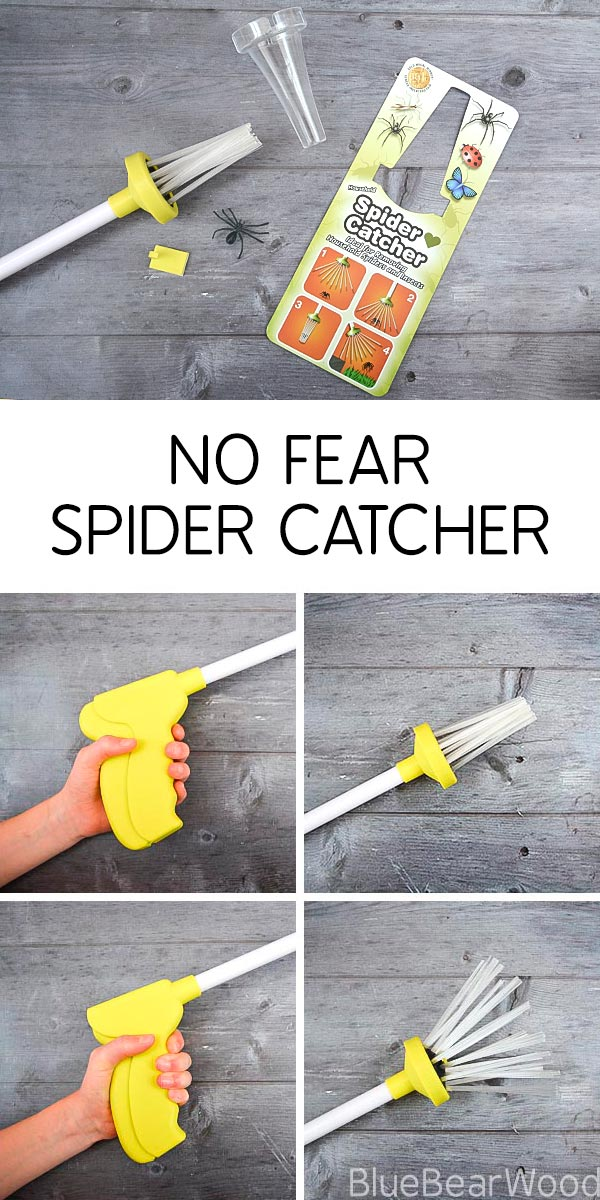 No Fear Spider Catcher