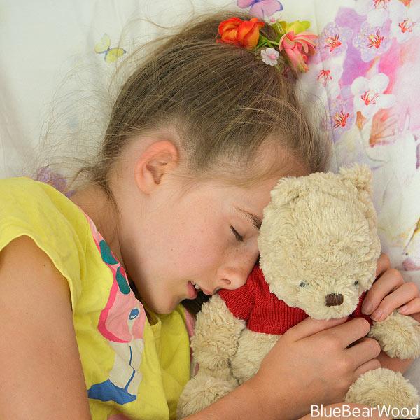 Winnie The Pooh A Soft Toy