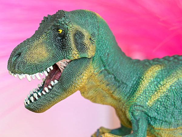 Schleich Animal Figures T-Rex & Farm World Available In George At Asda