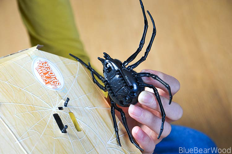 Underneath The Robo Alive Crawling Spider