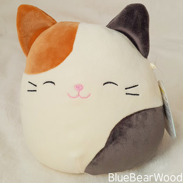 Cameron The Cat Squishmallow