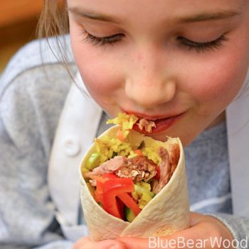 Duck Wrap Packed Lunch For Kids